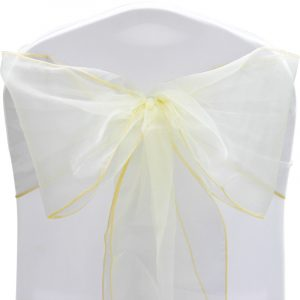 chair cover and sash occs