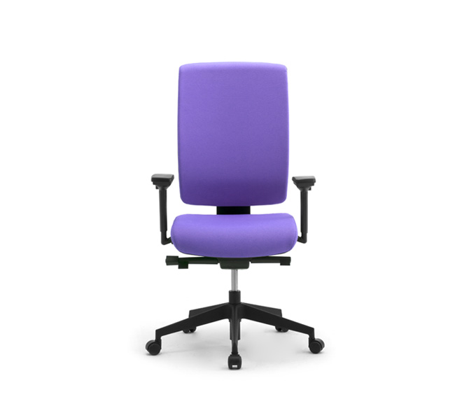 Ergonomic Office Chair With Lumbar Support The Best Chair Review Blog