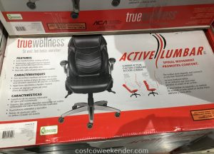 true innovations active lumbar chair true innovations true wellness active lumbar chair costco weekender intended for true wellness active lumbar office chair